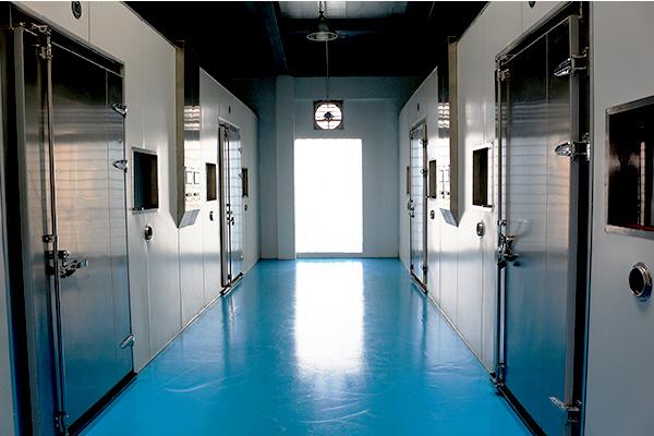 Với 16 buồng lên men quy mô lớn,  Nhà máy Tỏi Kim Cương Đông Á đạt công suất 50 tấn/tháng tương đương 600 tấn/năm